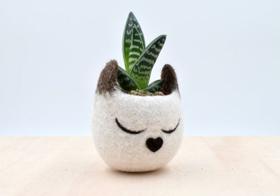 Hey, I found this really awesome Etsy listing at https://www.etsy.com/listing/473290042/succulent-planter-siamese-cat-mini