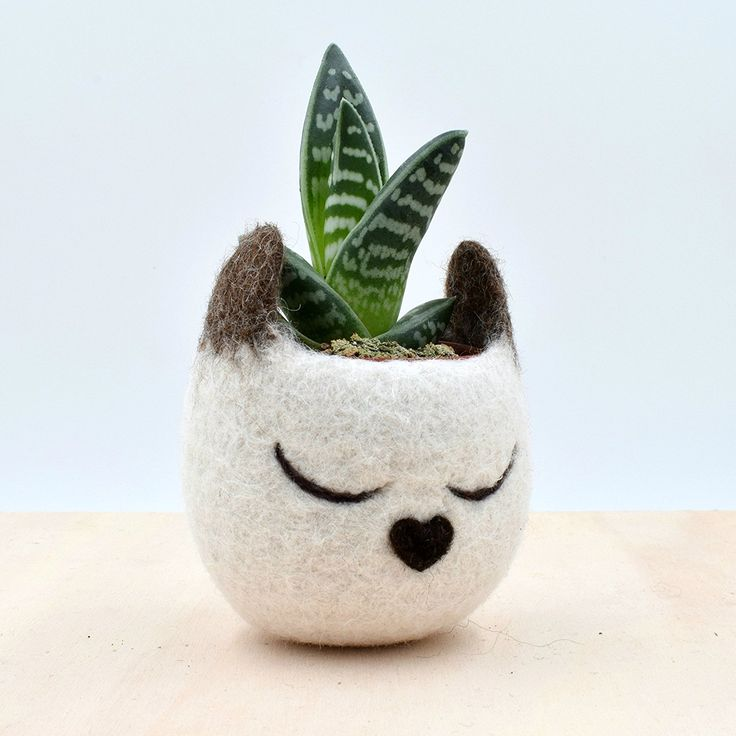 Siamese Cat lover gift for her / Felt succulent planter / Decorative Felt Flower Pot / Small indoor planter * Details can be found by clicking on the image. (This is an affiliate link and I receive a commission for the sales)