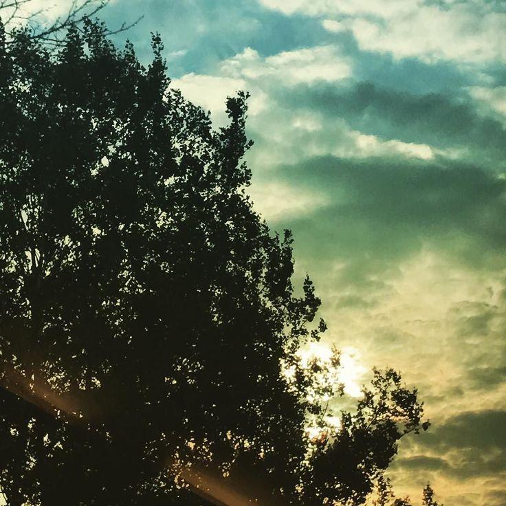 """PARA MEDITAR -- """"A vida estava nele e a vida era a luz dos homens. A luz resplandece nas trevas e as trevas não prevaleceram contra ela"""" (João 1:45) -- Jesus veio para trazer luz! Nós vivíamos em grandes trevas (Mt 6:23) e Ele veio para resplandescer! A partir do momento que essa luz brilha todas as trevas se dissipam. Esse processo se inicia em nossa conversão ...""""Porque Deus que disse: Das trevas resplandecerá a luz ele mesmo resplandeceu em nosso coração para iluminação do conhecimento da…"""