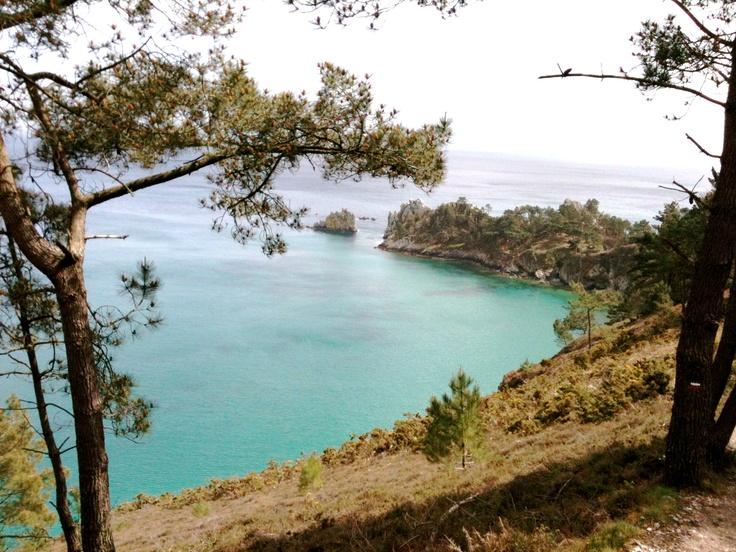Sentier côtier vers Cap de la chèvre .Presqu'île de Crozon .Finistère-  Bretagne