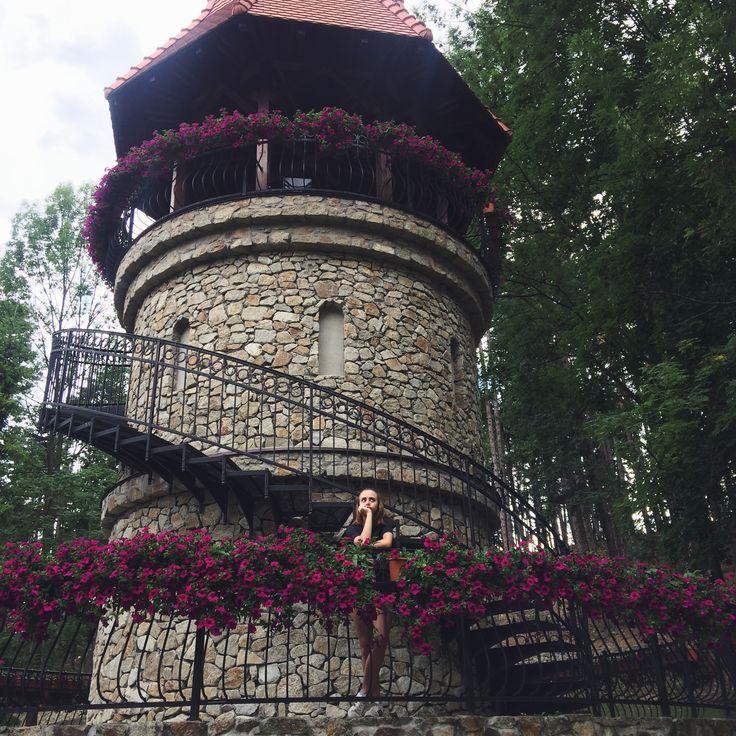 Pinnacle,flowers and me