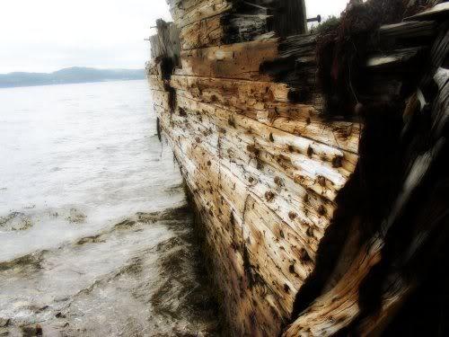 Shipwreck, Marystown, Newfoundland