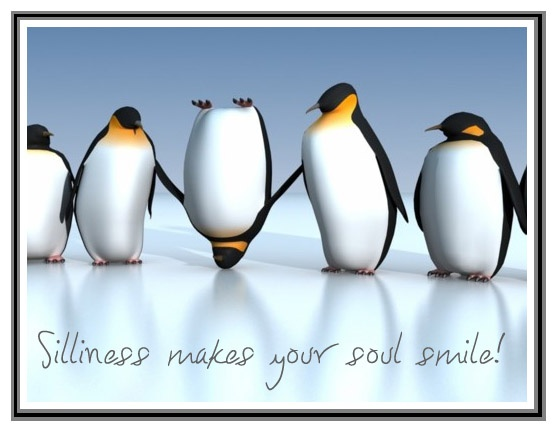 Cute.King Penguins, Silly,  Aptenodyt Patagonica, Inspiration, Funny, Humor, Things, Soul Smile, Soul Quotes