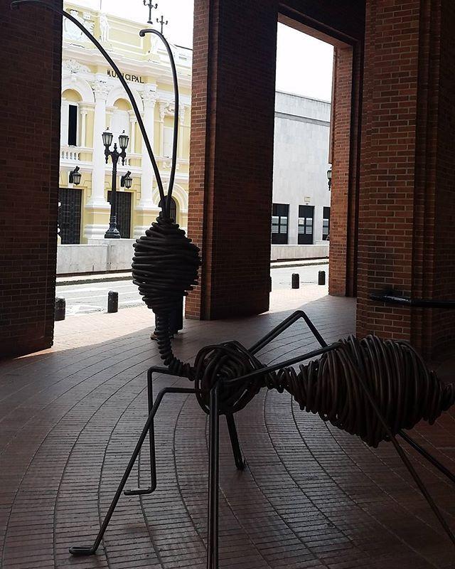 Kunst in cali Kolumbien  #kolumbien #cali # Insekten  #www.horizonteentdecken.de
