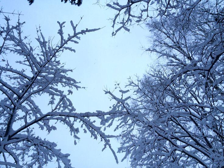 Winter in Savonlinna, Finland