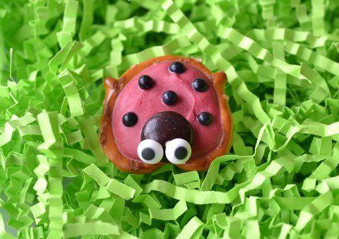 sweet n salty ladybug