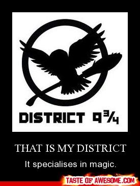 lol harry potter meets the hunger games. that would be a pretty epic movie... hmm.....