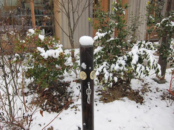 冬のBerry's Life  ドッグリードフックにも雪が積もりました http://berryslife.com