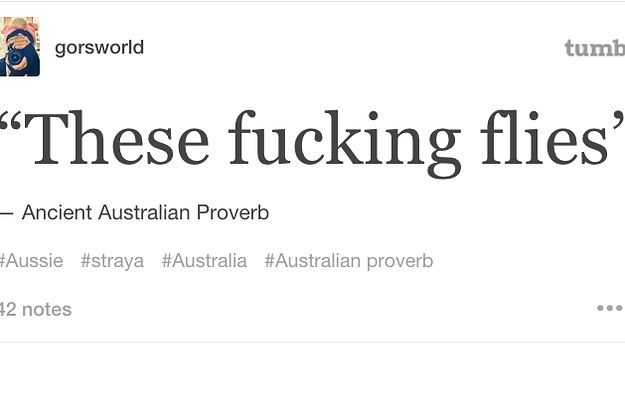 22 Times Tumblr Perfectly Captured What Summer Is Like In Australia