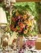 Casamento ao ar livre!: Altars Também, Ar Book, Marriage To