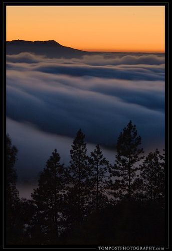 Berkeley Hills Fog with Mount Tamalpais by tompost, via Flickr