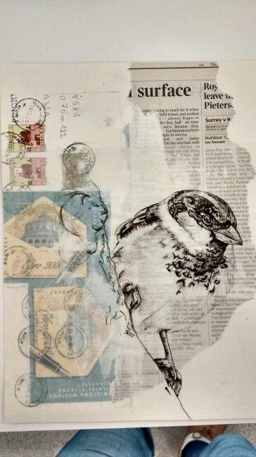Sparrow, bird, wildlife art, Paula Swisher style graphite pencil drawing by Karolina Czerwinska