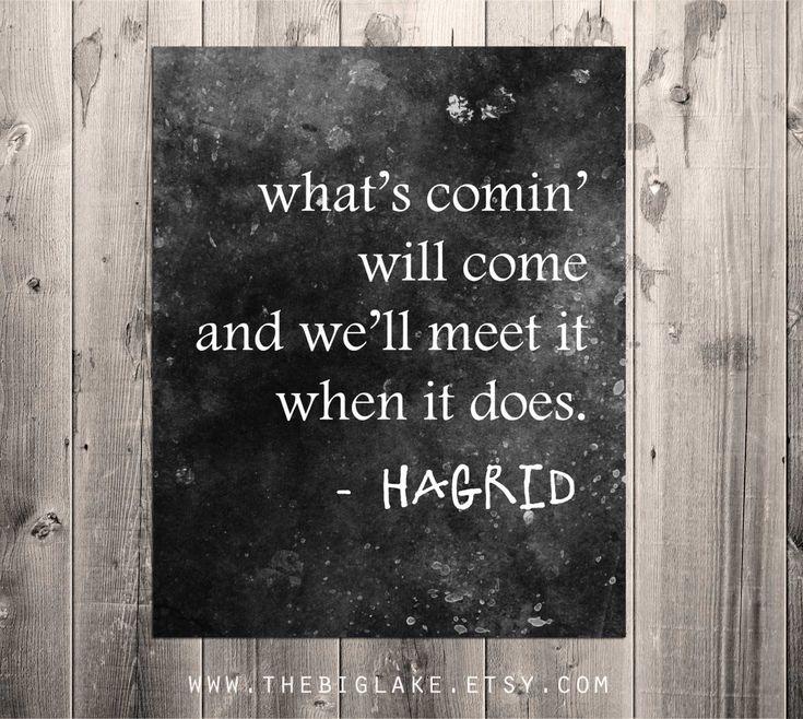 Bildresultat för hagrid what will come will come