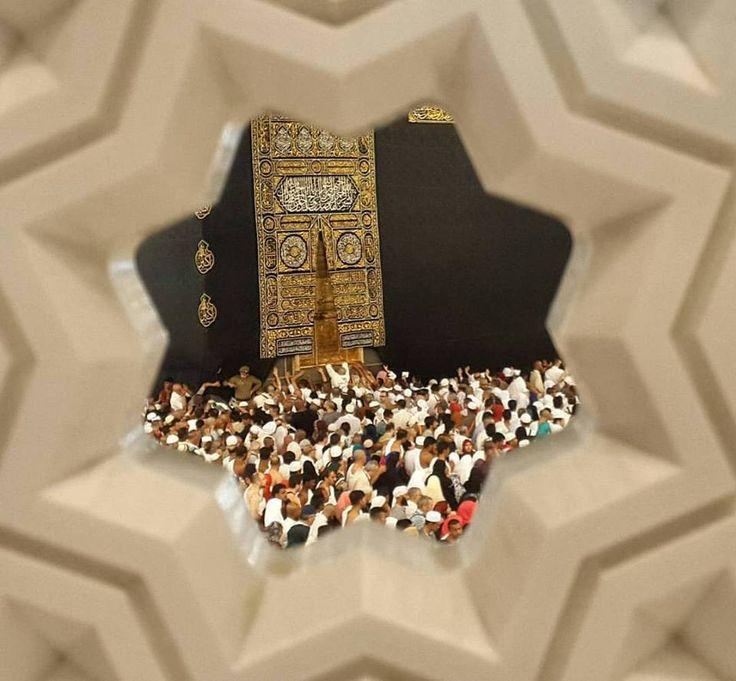 #Quran #QforQuran #QuranRecitation #AyatOfTheDay #HadithOfTheDay #HadeesOfTheDay #Sunnah