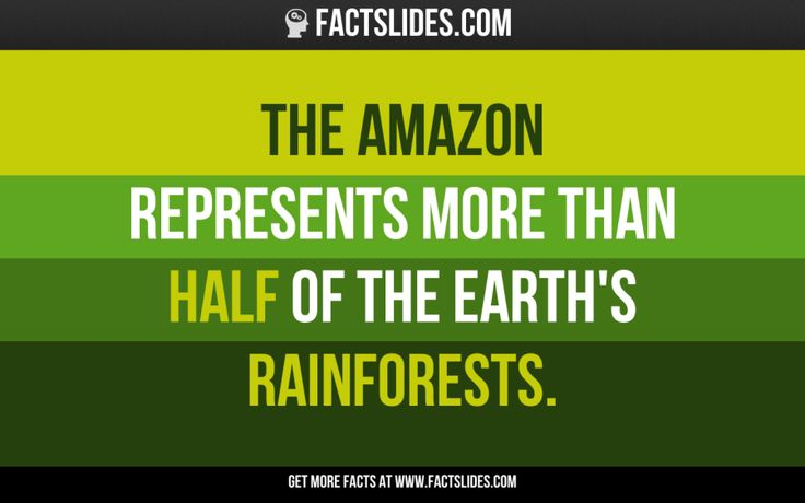 17 facts you didn't know about... THE AMAZON RAINFOREST