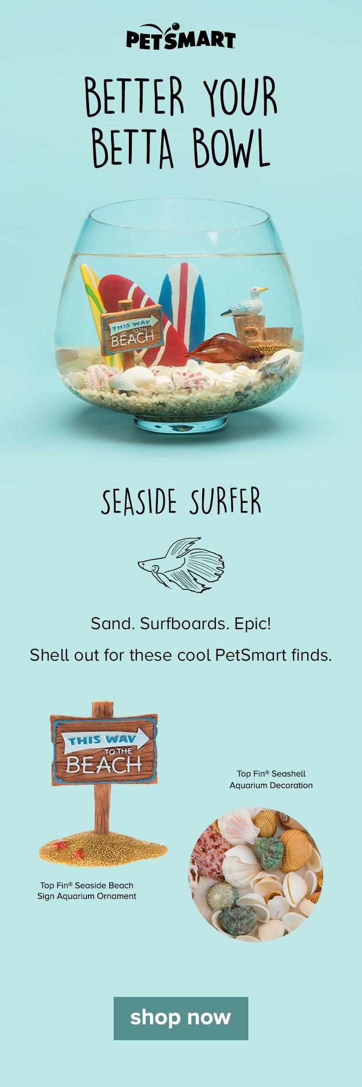 Freshwater fish for aquarium petsmart - Top Fin Surboards Aquarium Ornament At Petsmart Shop All Fish Ornaments Online