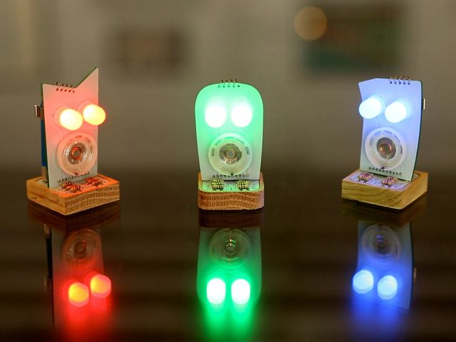 Customizable Robots with Evolving Personalities