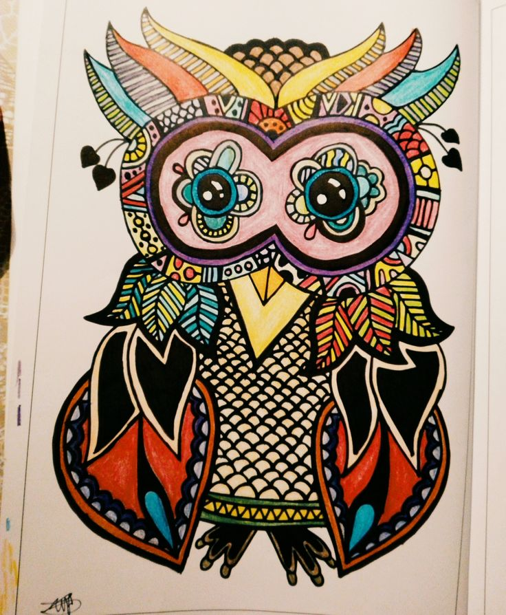 #colorfull #owl
