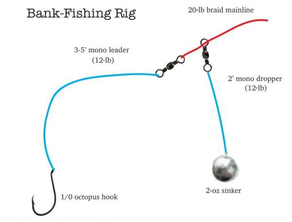 Simple Shore Fishing Rig For Fall Walleyes Target Walleye Fishing Rigs Walleye Rigs Walleye Fishing