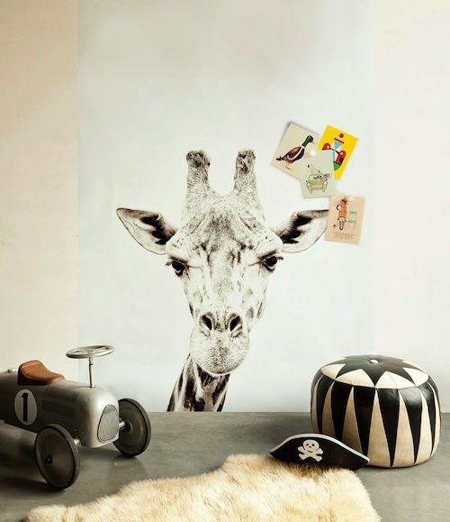 Giraffe Printed Magnetic Wallpaper