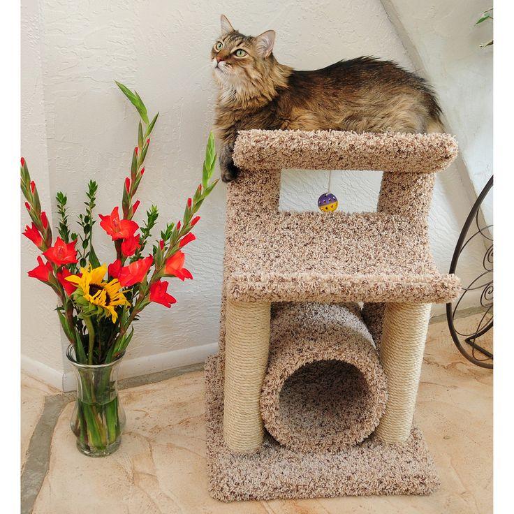 Best 25 Modern Condo Ideas On Pinterest: Best 25+ Cat Condo Ideas On Pinterest