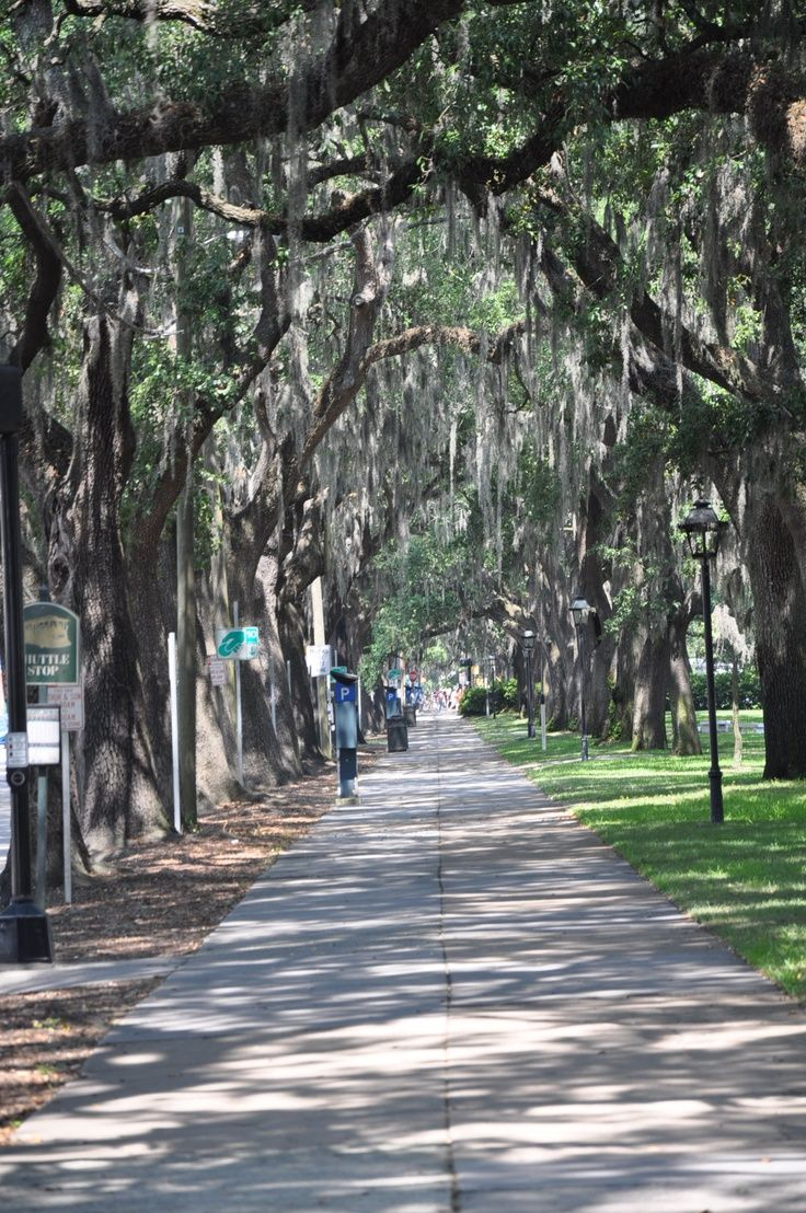 River Street Savannah GA | River Street walkway, Savannah GA | Places I've Been
