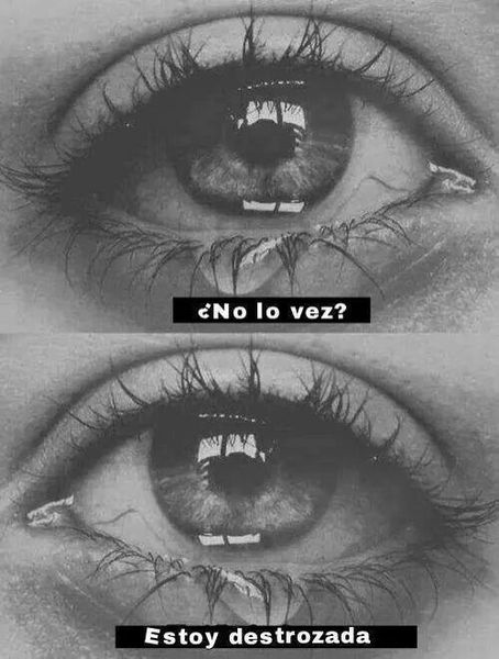 #Suicida #Suicide #SuicideRoom