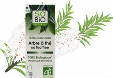 comment utiliser l'huile essentielle tea tree