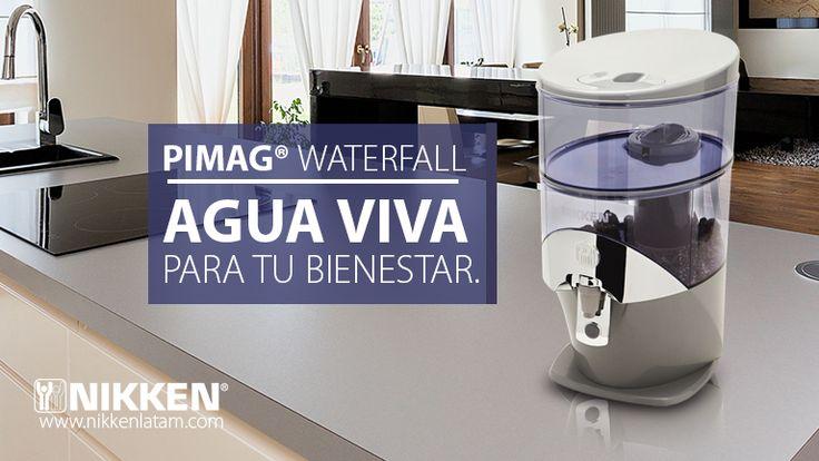 El agua alcalina es un tipo de agua ionizada que actúa como un potente y natural antioxidante, con capacidad de ayudar al organismo a eliminar los desechos ácidos que produce el proceso natural de la digestión.