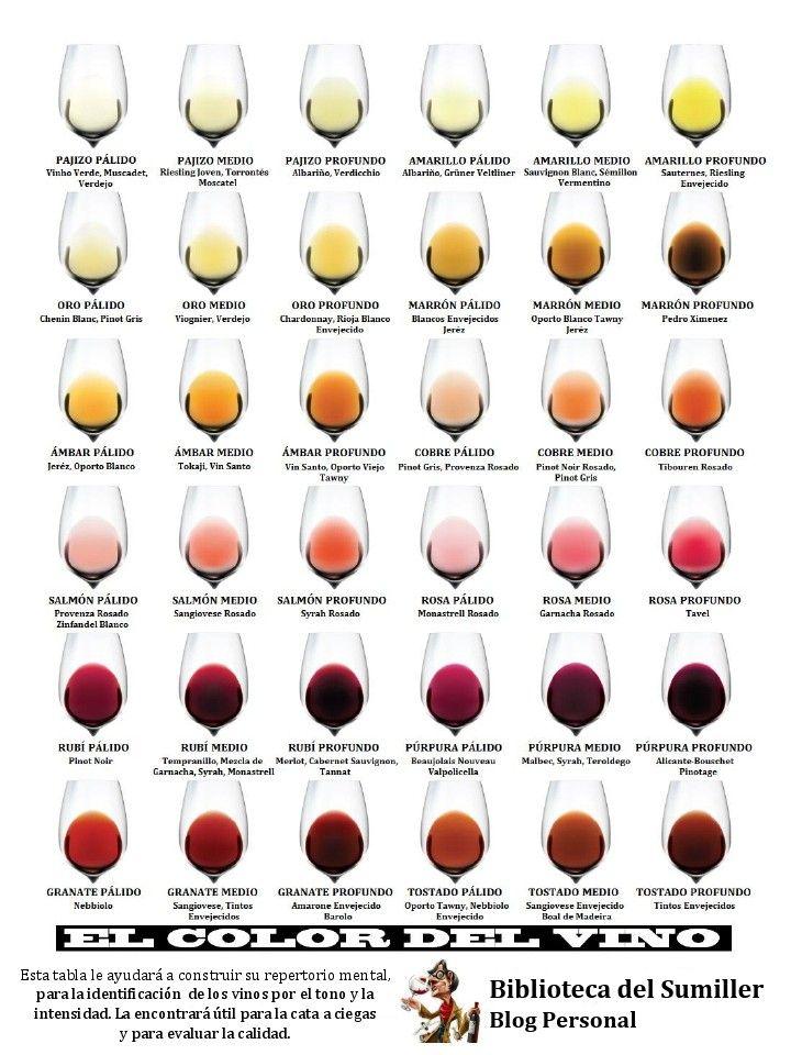 Los restaurantes, los minoristas y las tiendas de vino han estado clasificando los vinos por su color durante años: blanco, rosado y tinto. Sin embargo, el color de un vino es mucho más importante …