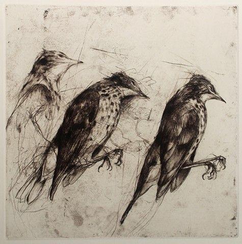 Jake Muirhead- Printmaker - Thrush
