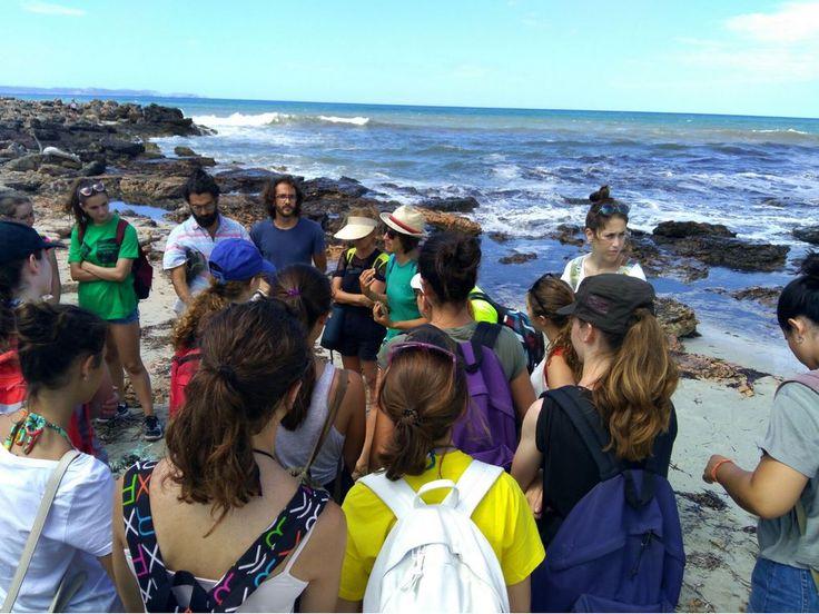 Excursión científica a la platja de Es Caragol en el VIII Campus Científico Técnico de Verano de la UIB