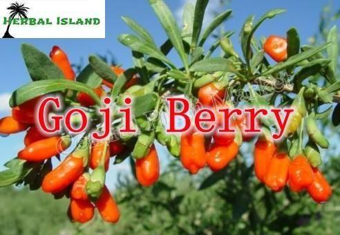 Сильный Антиоксидант, Anti-aging Goji/wolfberry экстракт 40% Полисахарида 400 г/лот, богатые витамины и аминокислоты
