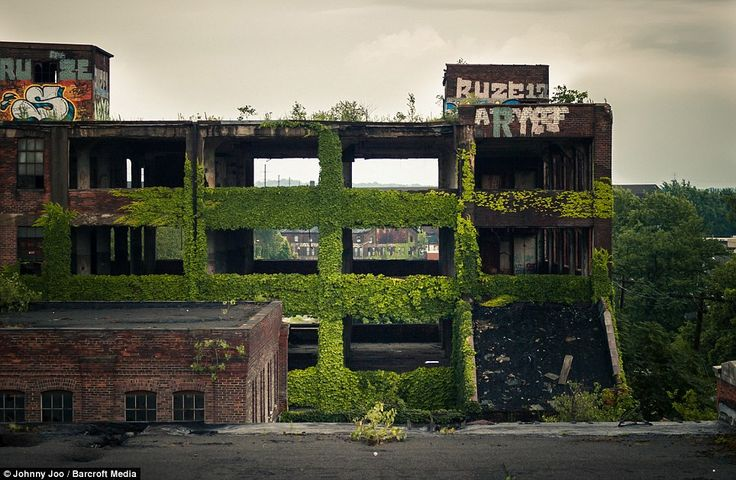 Plants climb the walls of the abandoned factories of Westinghouse Electric in Cleveland, Ohio