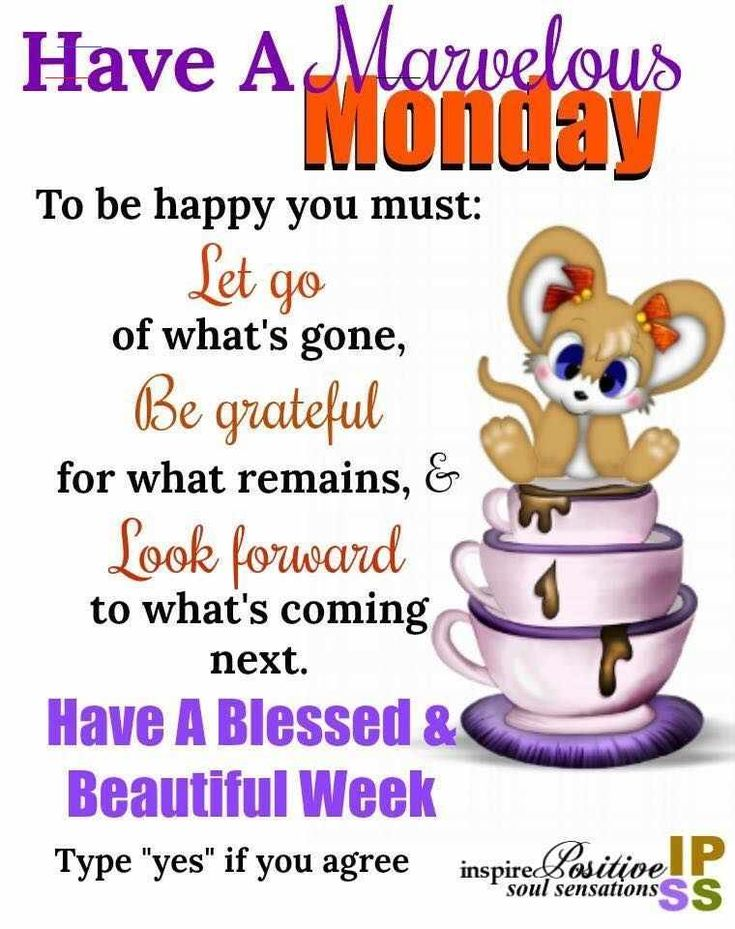 Have A Marvelous Monday happymondayquotes in 2020