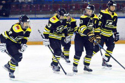 Sputnik Almetievsk vs Omskie Yastreby Omsk Ice Hockey Live Stream - Minor Hockey League MHL