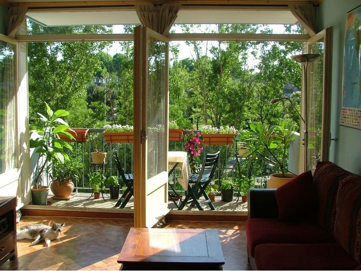 8 best plants images on Pinterest | Balcony gardening, Decks and ...