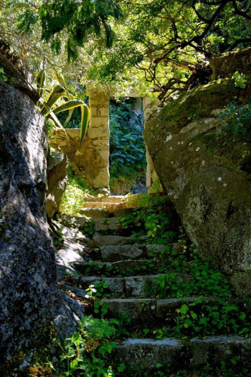 Hidden passage in Caldas de Monchique / Portugal (by John Butler).
