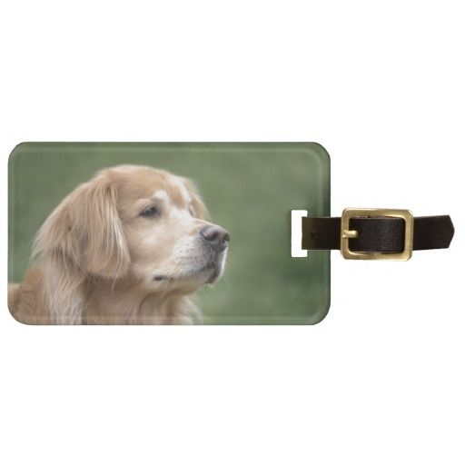Golden Retriever in Closeup Luggage Tag by #AugieDoggyStore. Sold 4 tags to a customer in Baltimore, MD