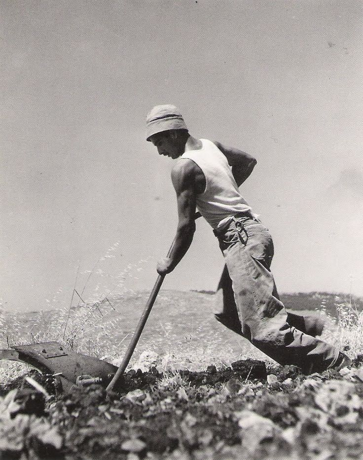 1949. French Jew for land clearing