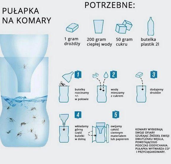 Najlepsza pułapka na komary