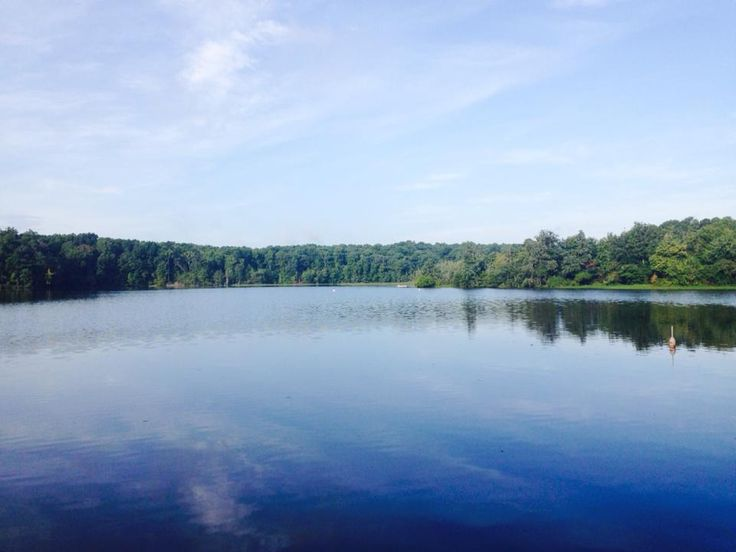 A beautiful shot of Lake Johnson in #Raleigh from one of our staff members!