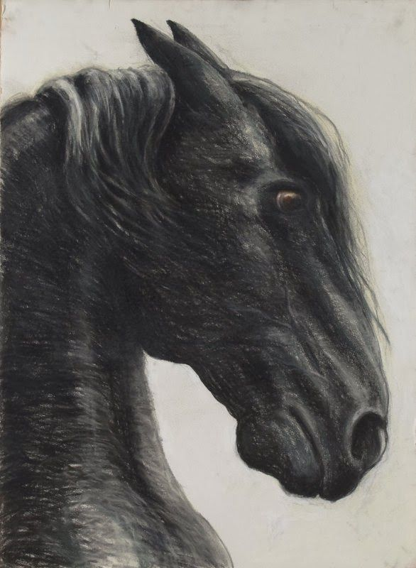 Debra Goldsmith: Black Horse, Red Horse, Drawings on paper, charcoa...