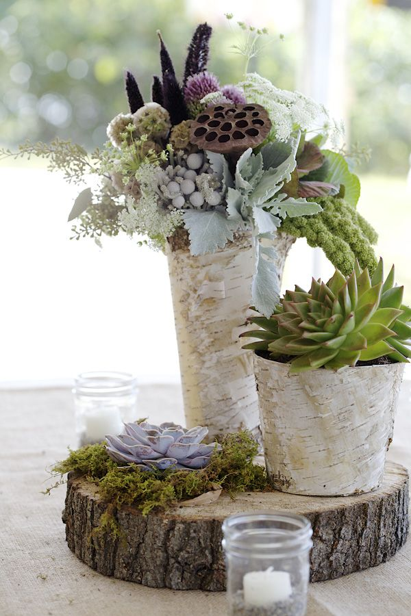 Scabiosa pods, Dusty Miller, Lamb's ear, succulents, birch bark vases, moss and tree slice. Cute idea for garden, rustic, or outdoor theme wedding.