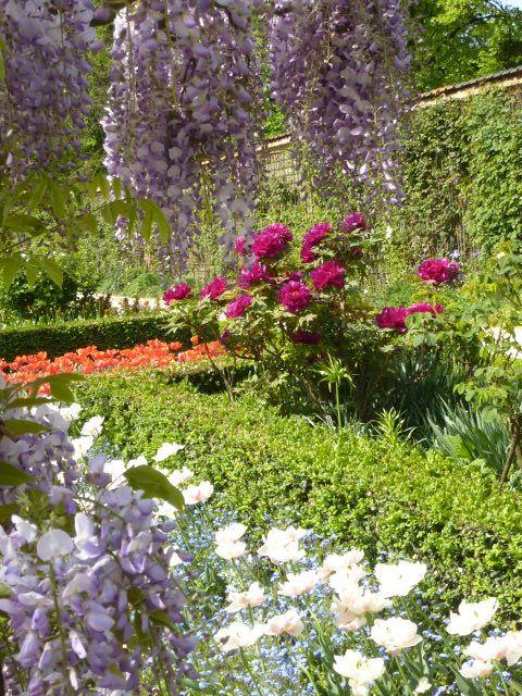 世界でも有名なバラ園の一つ「バガテル公園」はフランス・パリのブローニュの森の一角にある。