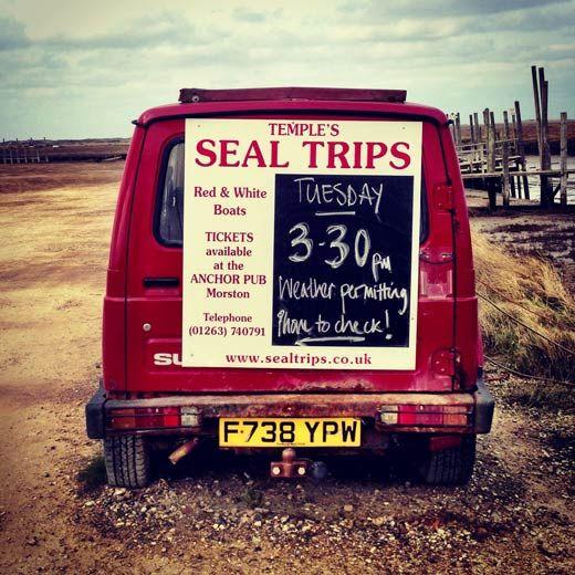 Seal trips at Morston - North Norfolk