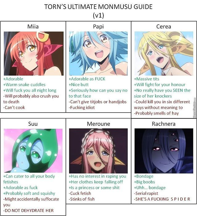 "I love them all but I don't think it matters that rachnera is a s p I d e r cause she's got a good ""personality"" and miia is a god damn snake I mean come on now #monstermusume #miiaandrachnera #monmusu"