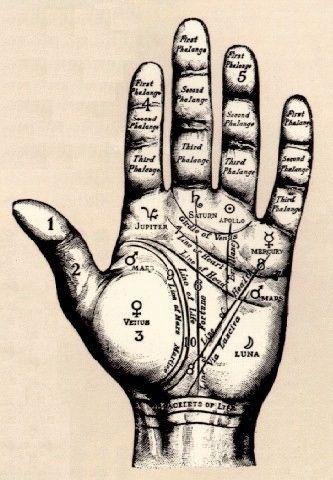 O destino na palma das nossas mãos