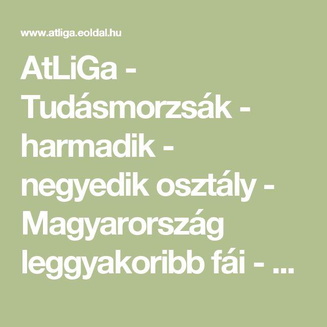 AtLiGa - Tudásmorzsák - harmadik - negyedik osztály - Magyarország leggyakoribb fái - Telepített erdők