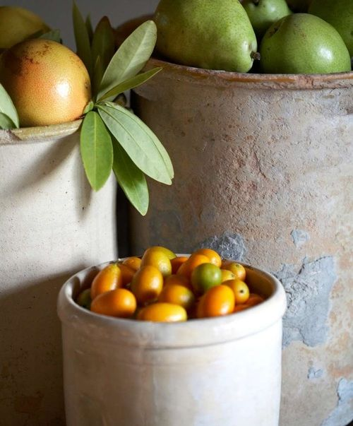 citrus in french pottery